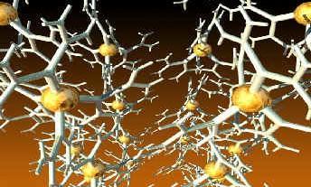 yabo16app与神经系统的关系